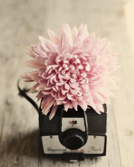 A polaroid fotók szerelmeseinek!
