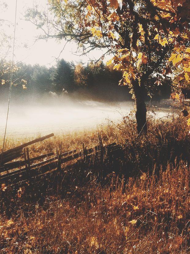 Hol érdemes fotózni ősszel?