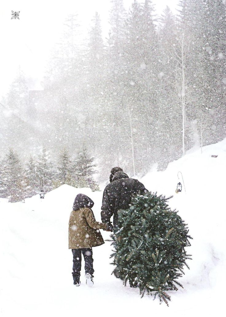 Erős havazásnál csak óvatosan fotózz, ha nincs védőtokod